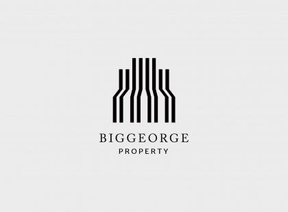 bgp-logo1